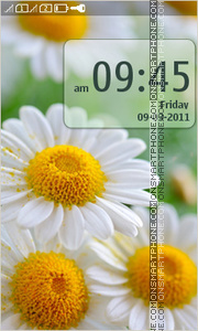 Скриншот темы Daisies Flowers