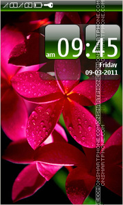 Red Tropical Flower theme screenshot