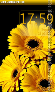 Yellow Gerberas theme screenshot