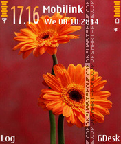Orange flowers theme screenshot