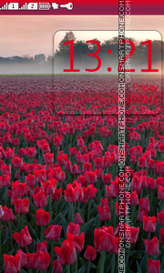 Red Tulip Field theme screenshot