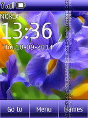 Flowers Irises theme screenshot