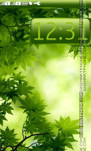 Green Maple Leaves tema screenshot