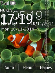 Clown Fish 03 theme screenshot
