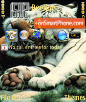 Tiger 05 theme screenshot