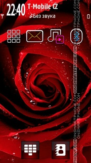 Rose 13 tema screenshot