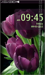 Purple Tulips 01 theme screenshot