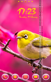 Cute Yellow Bird tema screenshot