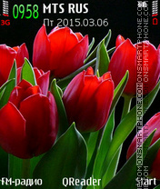 Red Tulips theme screenshot