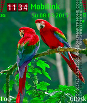 Parrots Couple theme screenshot