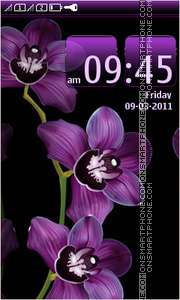 Purple Orchids theme screenshot