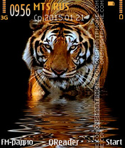 The-Tiger theme screenshot