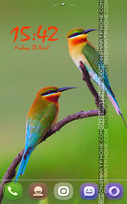 Golden BeeEater Birds theme screenshot