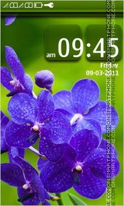 Blue flowers 06 theme screenshot