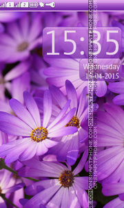 Purple Daisies theme screenshot
