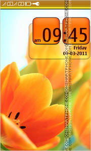 Orange Tulips 02 theme screenshot