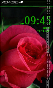 Rose 14 tema screenshot