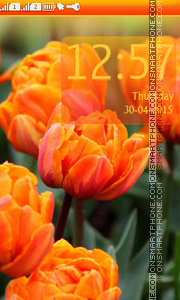Orange Tulips Theme-Screenshot