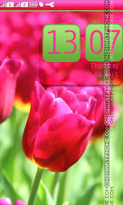 Tulips Macro tema screenshot