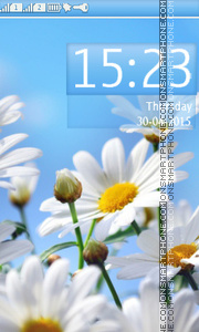 Daisies tema screenshot