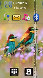 Colorful Birds tema screenshot