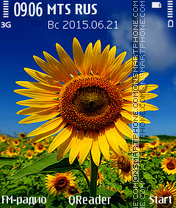 Sunflower+ theme screenshot