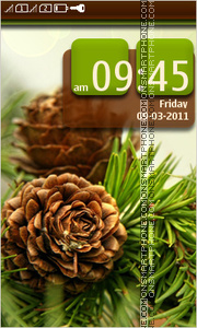 Fir Cones 01 theme screenshot