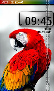 Parrot Macaw 01 tema screenshot