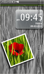 Red Poppy 01 theme screenshot