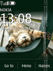 Cat 24 theme screenshot