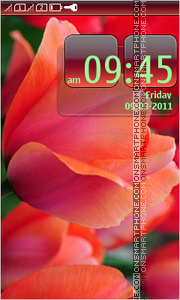 Flowers tulips theme screenshot