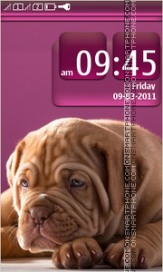 Cute puppy 08 theme screenshot