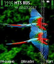 Macaws tema screenshot