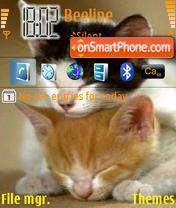 Sleep Cats theme screenshot