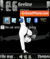 TKD Taekwondo theme screenshot