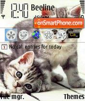 Cute Kittens theme screenshot