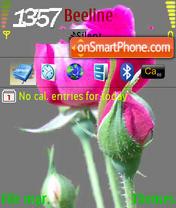 N73 Flowers theme screenshot