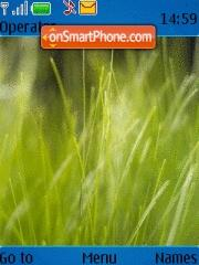 Fresh Grass Vista theme screenshot
