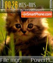 Kitten 02 theme screenshot
