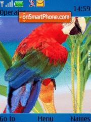 Parrot theme screenshot