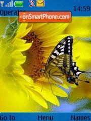 Butterfly 117 theme screenshot