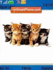 Kittys es el tema de pantalla