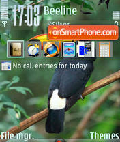 Bird 03 theme screenshot