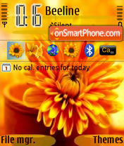 Скриншот темы Sun Flower