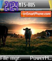 Holy Cow es el tema de pantalla