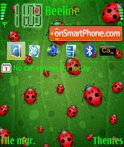 Ladybugs theme screenshot