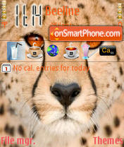 Cheetah Face theme screenshot