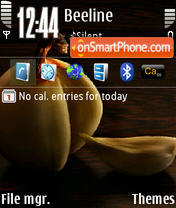 Onion D3 E61 theme screenshot