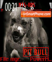 Pitbull 02 theme screenshot