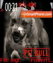 Pitbull 02 es el tema de pantalla